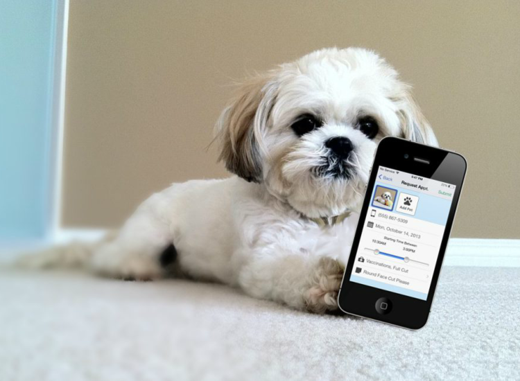 Your PetDesk App image