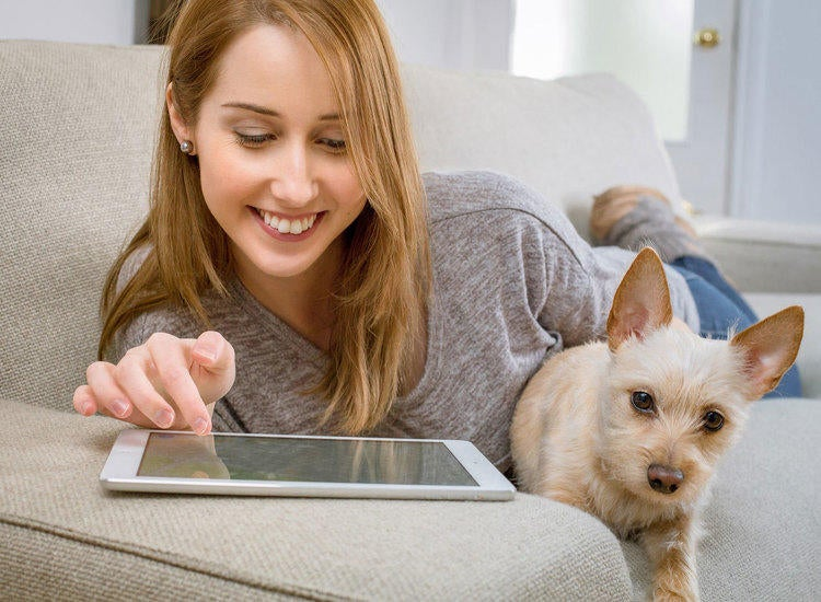 Your Pet's Health at Your Fingertips image